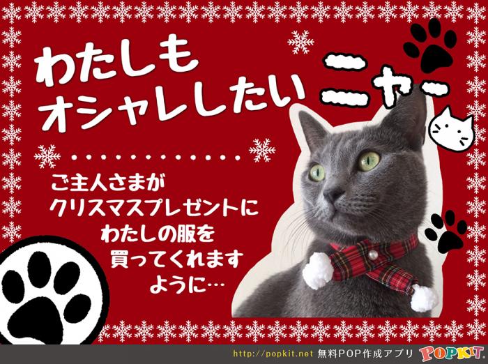 20171121クリスマス猫POP